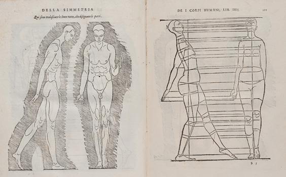 Della Simmetria de i Corpi Humani Libri Quattro