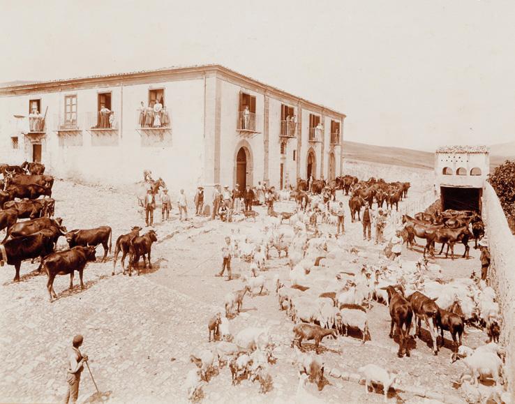 Sicily, ca. 1880