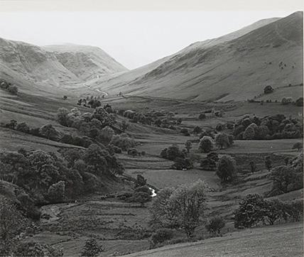 Landscape, 1979