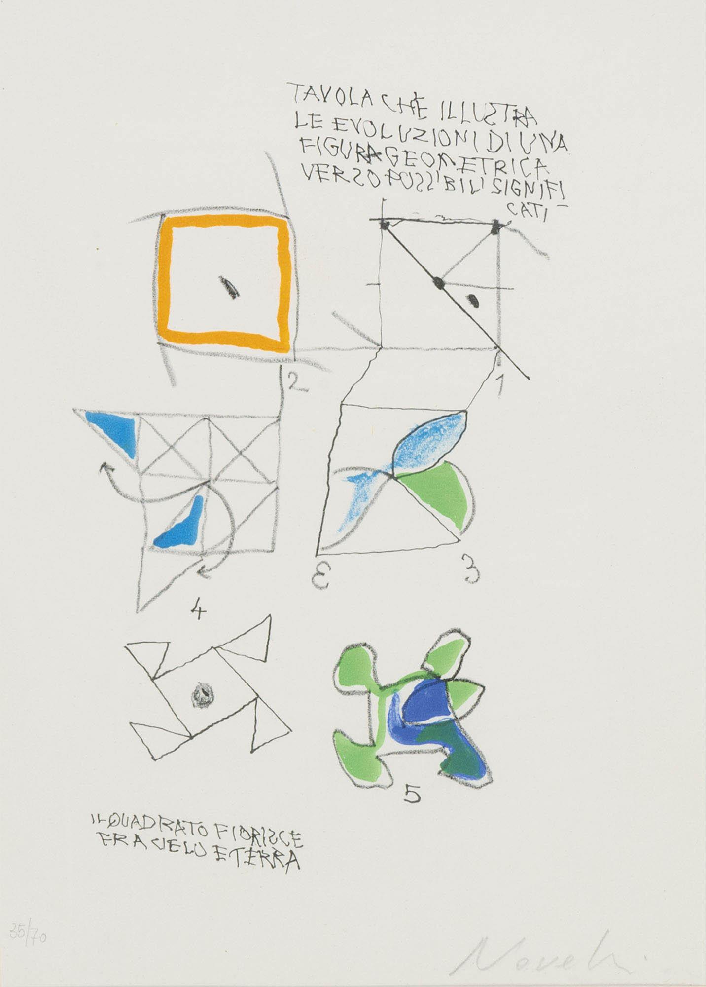 Tavola che illustra le evoluzioni…, 1965