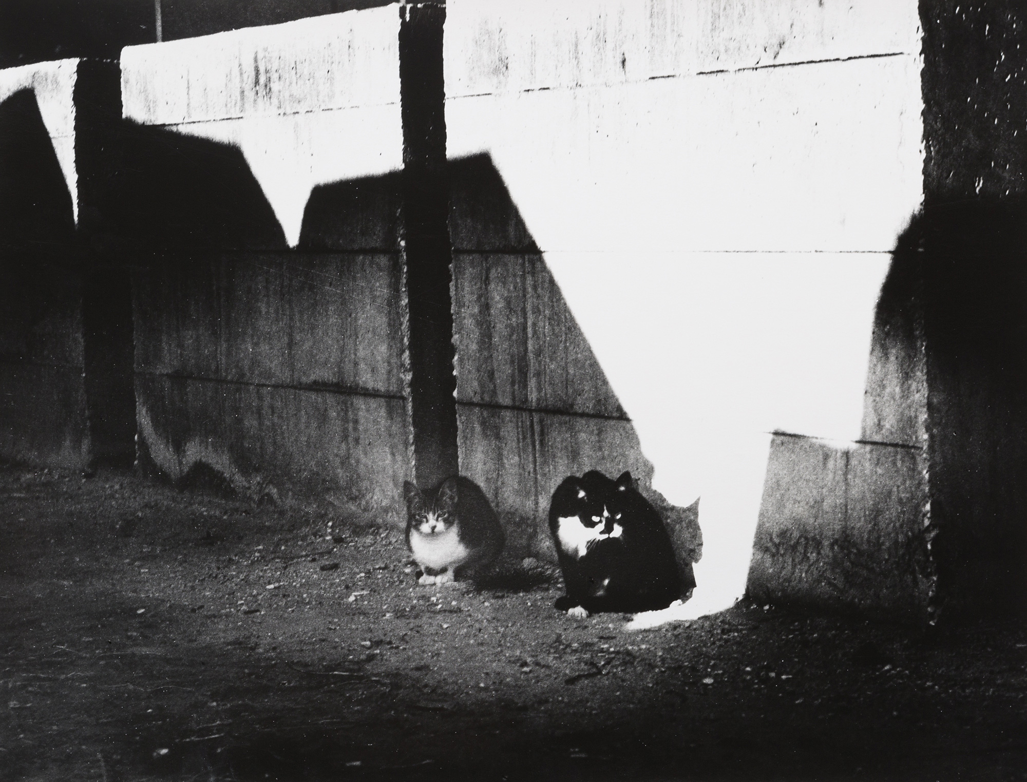 Felicità raggiunta, si cammina, 1986/'92