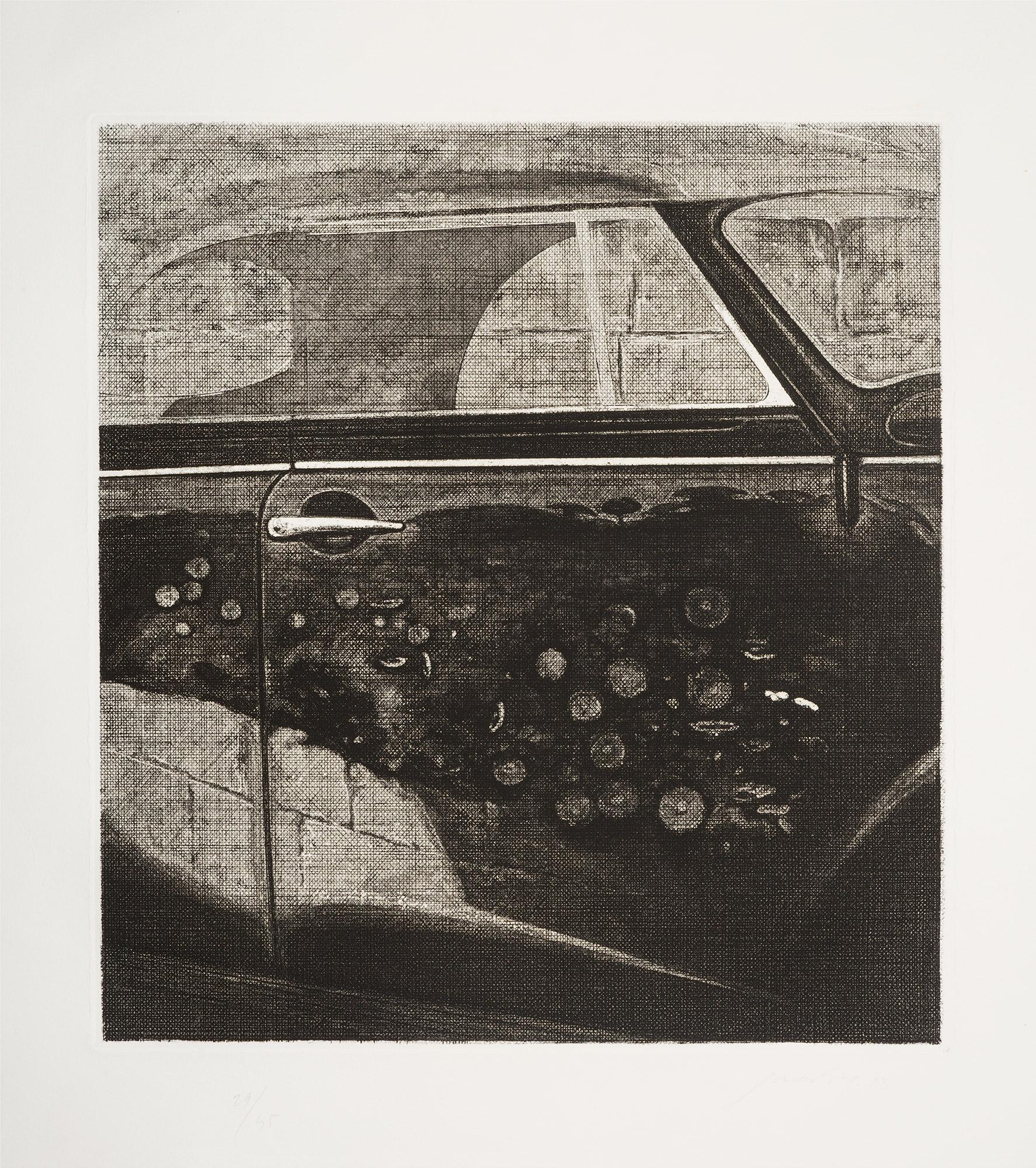 Fiori, macchina e muro, 1973