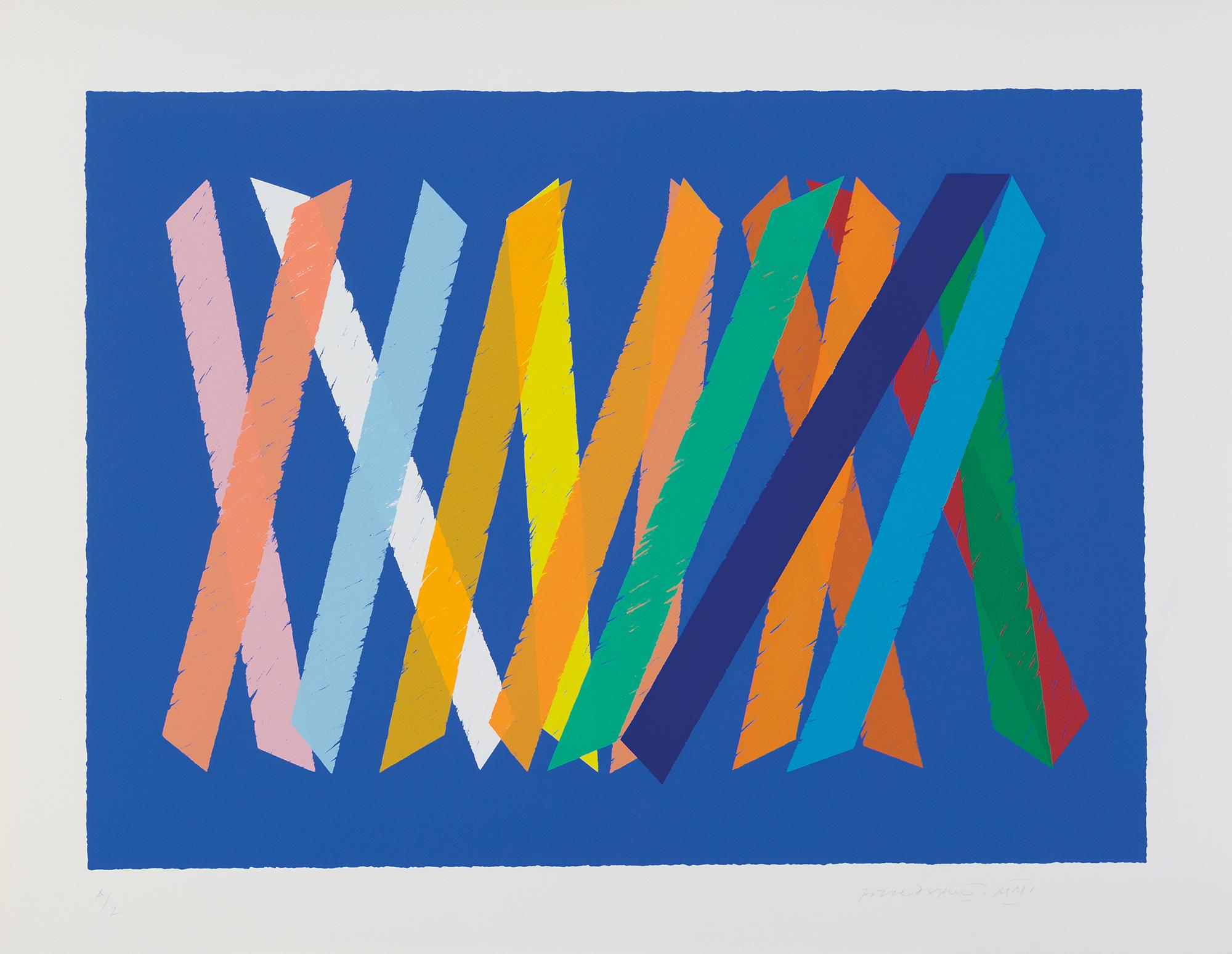 Amici colori, 2002