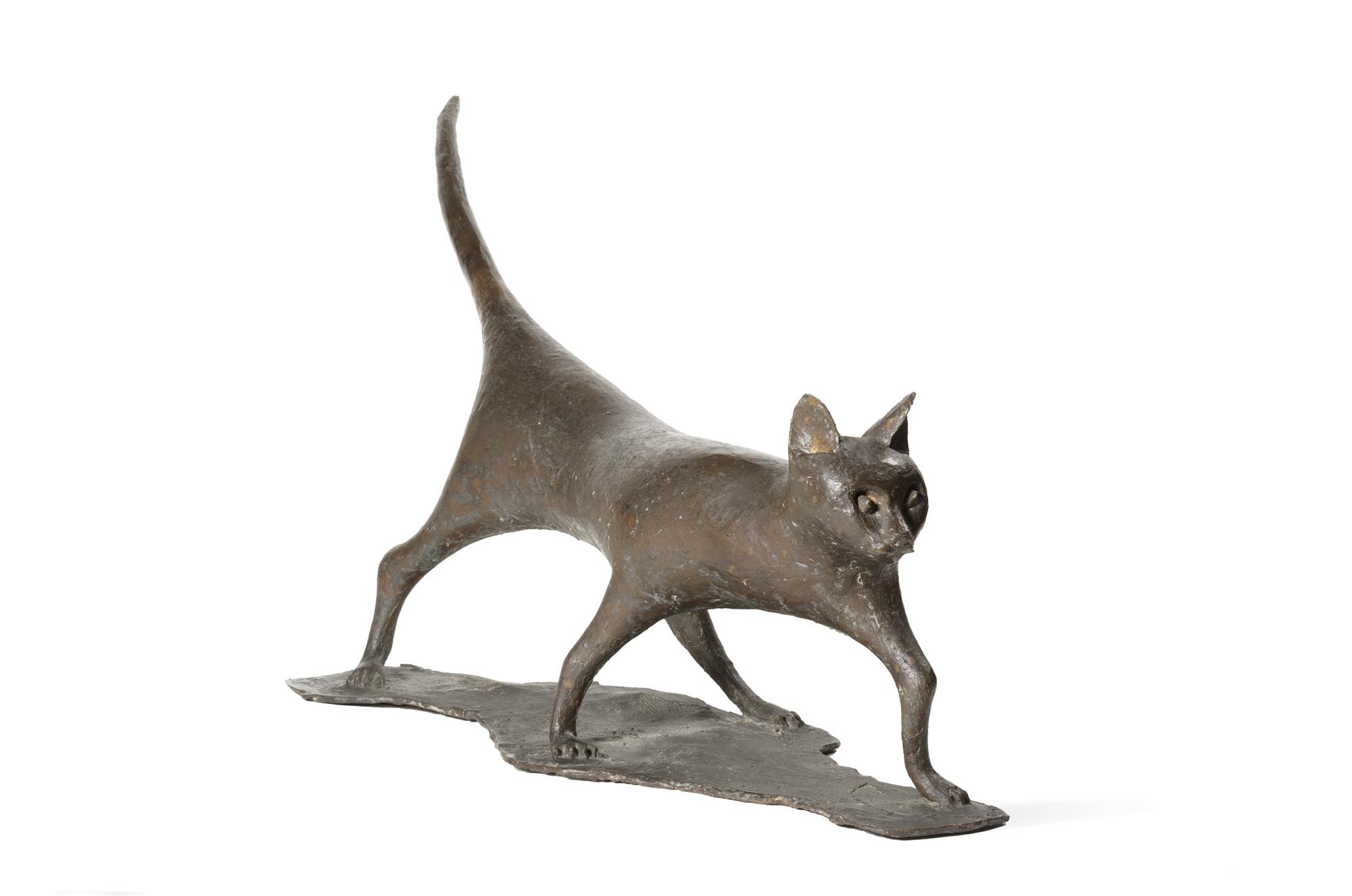 Gatto, 1953