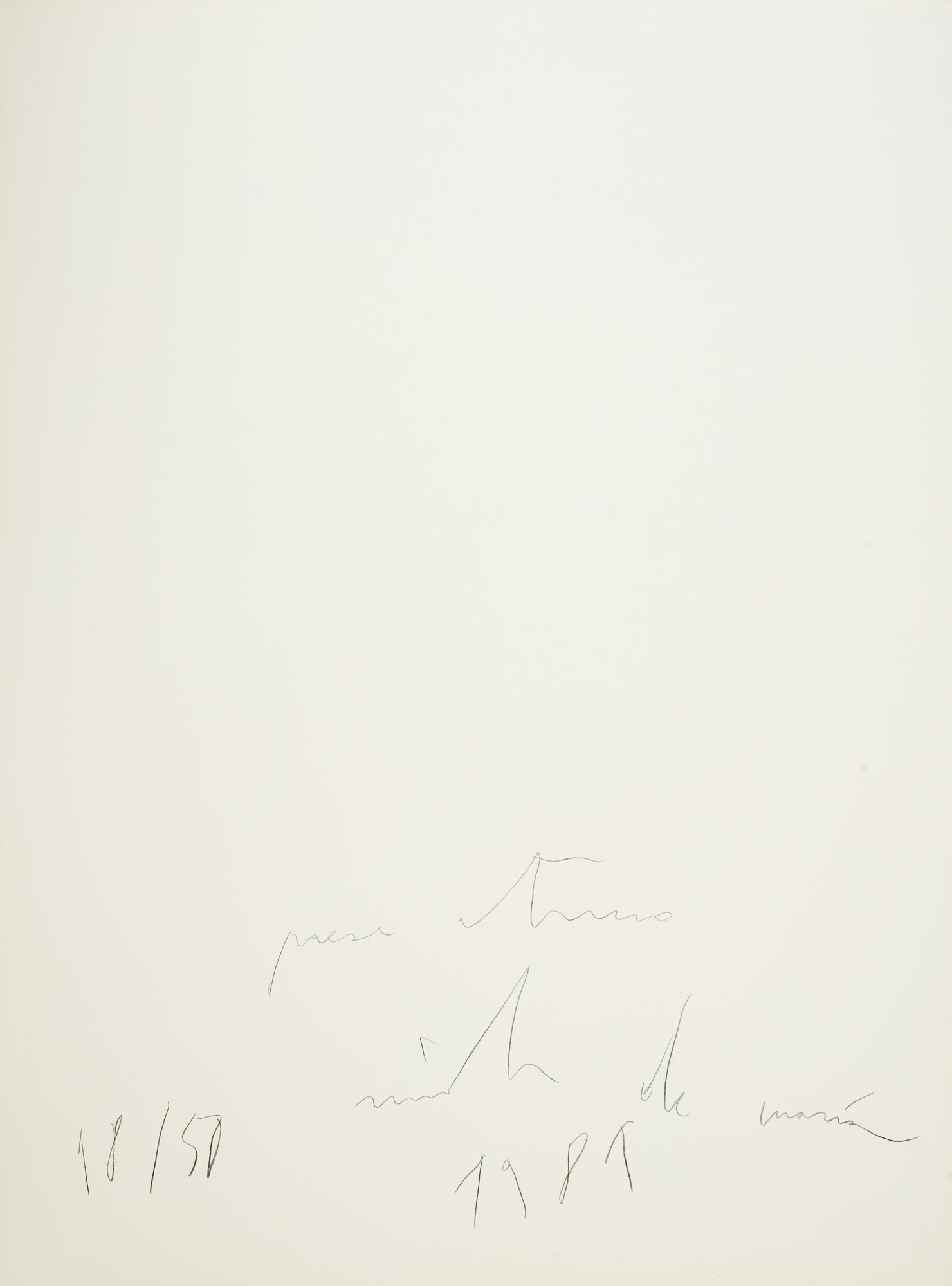 Tesoro, 1981