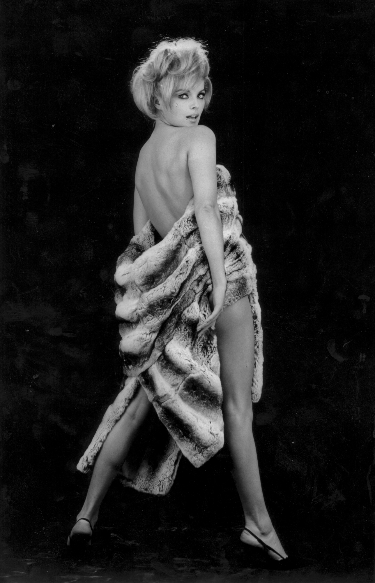 Virna Lisi, anni 1960