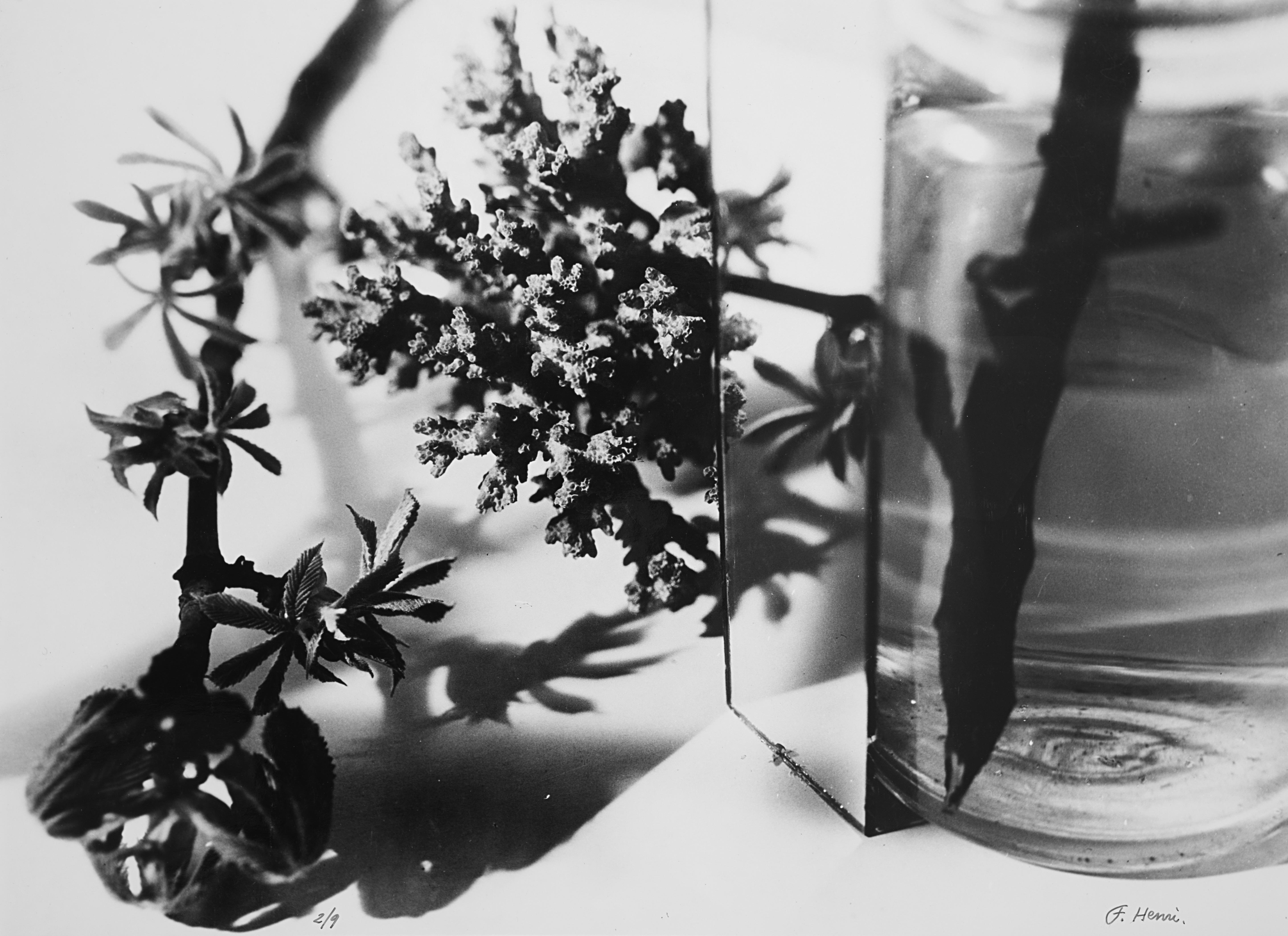 Nature morte, 1931