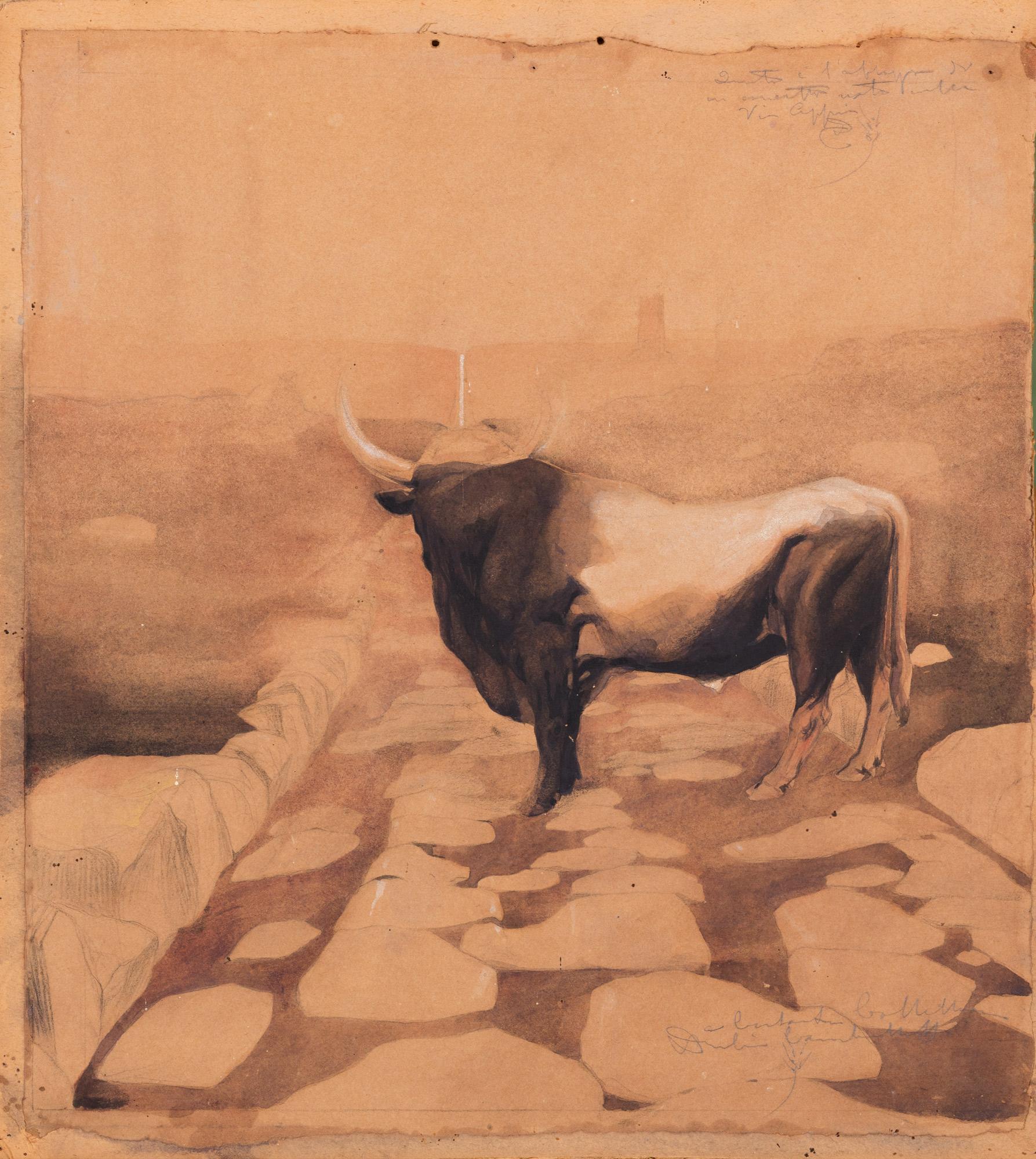 Bufalo sulla via Appia